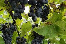 Charis Winery, Cumberland, United States
