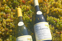 Treleaven Wines, King Ferry, United States
