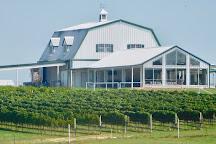 Blue Ostrich Winery & Vineyard, Saint Jo, United States