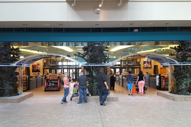 Visit Scheels on your trip to Sparks or United States