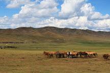 Mongolia Short Tours Agency, Ulaanbaatar, Mongolia