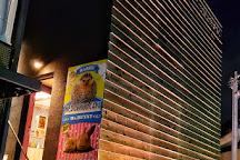 Hedgehog Cafe HARRY Roppongi, Minato, Japan
