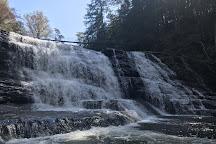 Cane Creek Falls, Fall Creek Falls State Park, United States