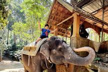 Elephant Junction, Thekkady, India