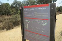 Menir do Monte dos Almendres, Evora, Portugal