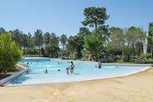 Aquatic landes, Labenne, France