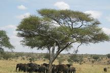 Nature Bound Africa, Arusha, Tanzania