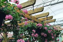 Barni Garden Center, Brusque, Brazil