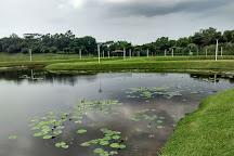 Lorong Halus Wetland, Singapore, Singapore