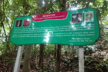 Gunung Gading National Park, Lundu, Malaysia