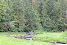 Alaska Rainforest Sanctuary, Ketchikan, United States