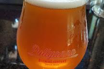 Pollyanna Brewing Company, Lemont, United States