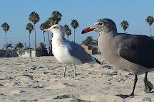 Belmont Shore, Long Beach, United States
