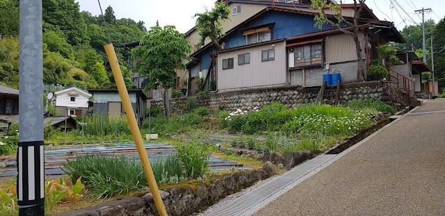 Hagi Takayama