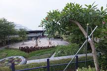Floral Clock, Singapore, Singapore