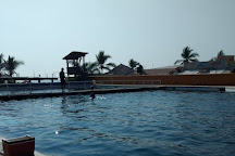 Delfiniti, Ixtapa, Mexico