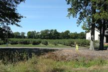 S. Kamphuis Blueberries, Holland, United States