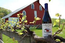 Galena Cellars Vineyard, Galena, United States