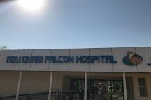 Abu Dhabi Falcon Hospital, Abu Dhabi, United Arab Emirates