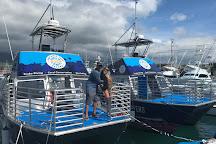 Aquatic Life Divers, Kailua-Kona, United States