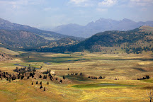Lamar Valley, Yellowstone National Park, United States