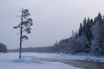 Neitikoski Rapids, Lieksa, Finland