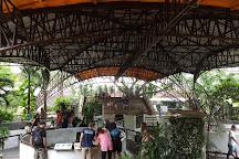 Snake Farm (Queen Saovabha Memorial Institute), Bangkok, Thailand
