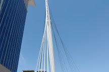 Denver Millennium Bridge, Denver, United States