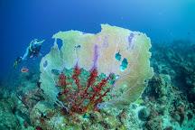Sweet Bottom Dive Center, St. Croix, U.S. Virgin Islands