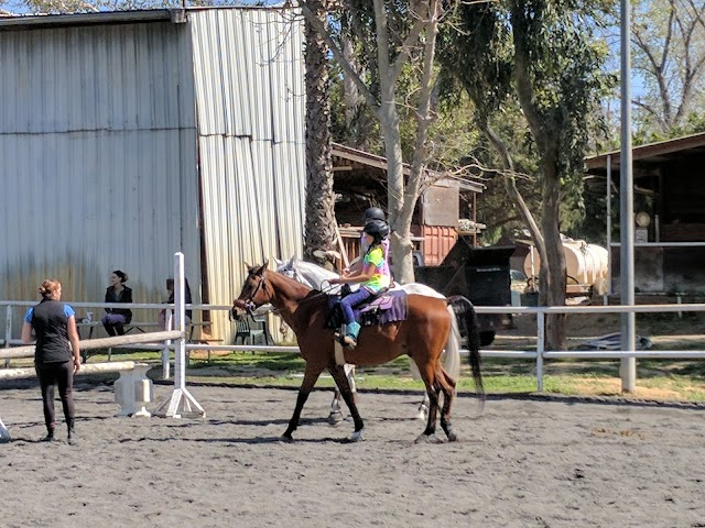 Sycamore Trails Stables