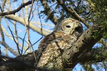 Trevor Zoo, Millbrook, United States