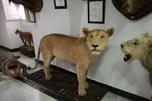 Museo del Bandolero, Ronda, Spain