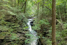 Foster Falls, Tennessee, United States