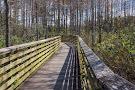 Delaware Scrub Natural Area