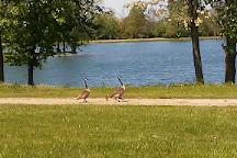Rei Lakes, Springfield, United States