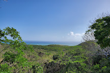 Bosque Estatal de Guanica, Guanica, Puerto Rico