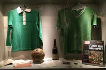 Musée des Verts, Saint-Etienne, France