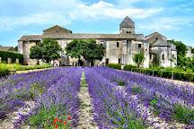 Monastery Saint-Paul de Mausole, Saint-Remy-de-Provence, France