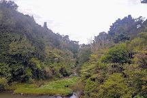 Maketu Waterfall, Ramarama, New Zealand