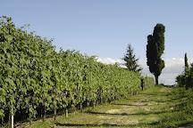 Azienda Agricola Fabrizio Battaglino, Vezza d'Alba, Italy