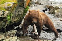 Alaska Adventure Unlimited, Wasilla, United States