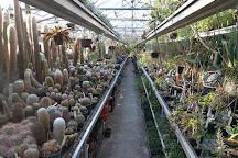 Botanische Tuin Zuidas, Amsterdam, The Netherlands