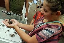 Ottawa Insectarium, Ottawa, Canada