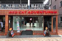 Red Cat Adventures, Airlie Beach, Australia