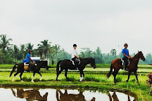 Ubud Horse Stables, Tegalalang, Indonesia
