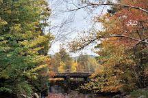 Leffert's Pond, Killington, United States