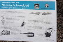 Brandon Marsh Nature Reserve, Coventry, United Kingdom