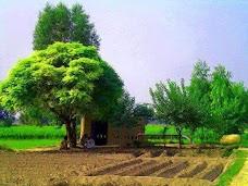 Noor Wala Bus Stop dera-ghazi-khan