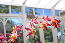 Orchid House and Gardens, Lanai City, United States