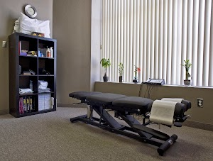 The Chiropractic Office
